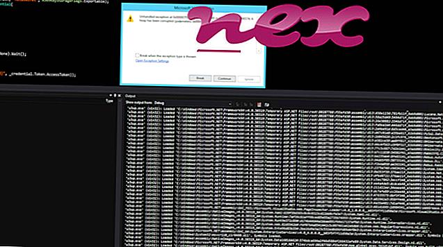 W3wp.exe dosyası nedir?