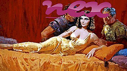 Qu'est-ce que Kleopatra.exe?