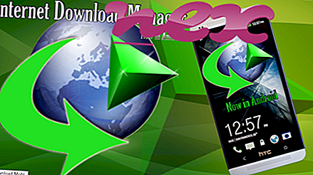 Kas ir Internet Download Manager.exe?